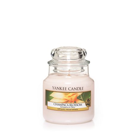 Yankee Candle Champaca Blossom Small Jar Candle