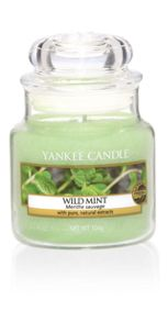 Yankee Candle Wild Mint Fragrance Range