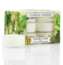 Yankee Candle Classic tea lights linden tree