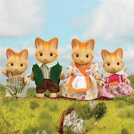 Ginger cat family
