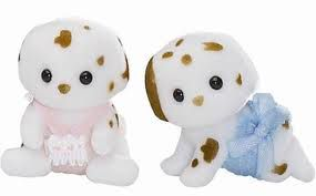 4884 Chocolate dalmation twins