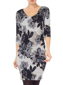 Phase Eight Horley rose print dress