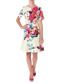 Phase Eight Aurora floral dress