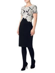 Phase Eight Lucianna lace dress