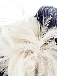 Gemma feather detail hat