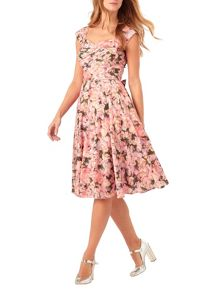 Phase Eight Rosalia Dress