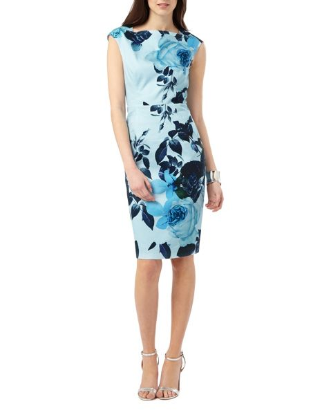 Phase Eight Chantay Rose Print Dress