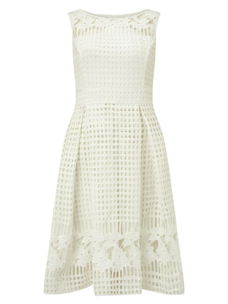 Phase Eight Lola lace dress