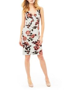 Phase Eight Phase Eight Gilly Rose Dress