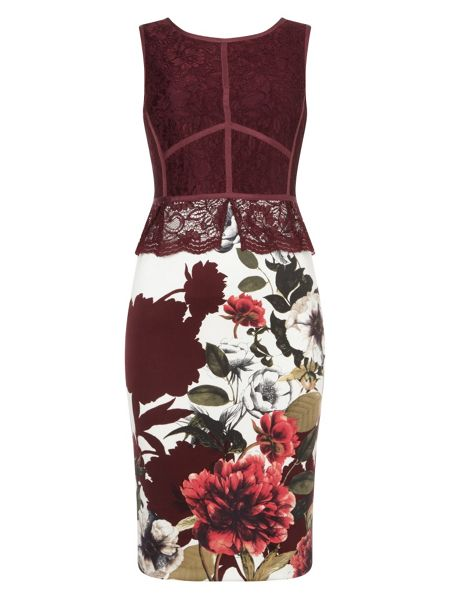 Phase Eight Hansel Lace Dress