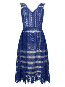 Phase Eight Camille Lace Dress