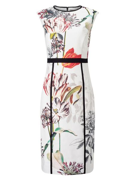 Phase Eight Marguerite Print Dress