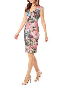 Phase Eight Lidia dress