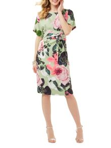 Phase Eight Chantay Rose Dress