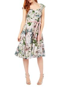 Phase Eight Adele Blossom Dress