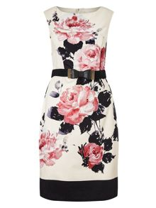 Phase Eight Carrera Rose Dress