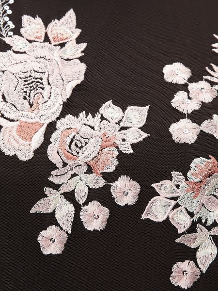 Phase Eight Fleur Embroidered Dress