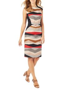 Phase Eight Kendra Print Dress
