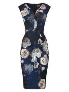 Phase Eight Camilla Rose Floral Dress