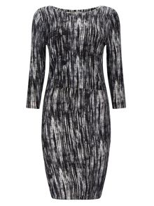 Phase Eight Printed Darina Dress