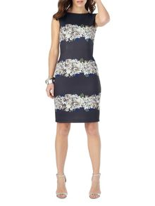 Phase Eight Lilana Print Dress