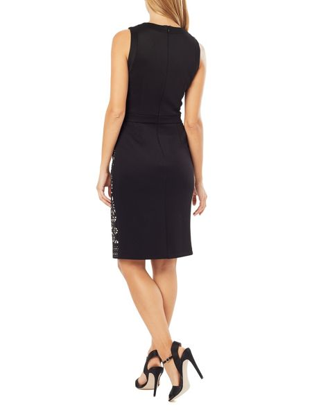 Phase Eight Anesha Dress