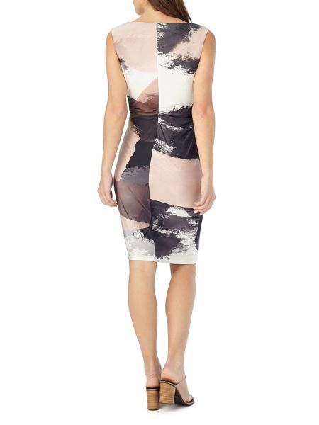 Phase Eight Fabienne Print Dress