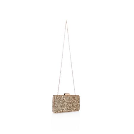 Carvela Gigi clutch bag