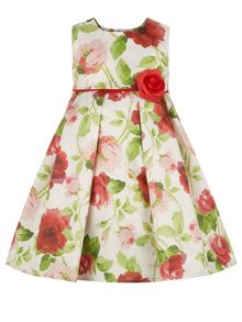 Monsoon Baby Girl Duchess Roses Dress