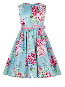 Girls Orphelia Rose Dress