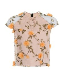 Elvi Plus Size Orange Floral Applique Top