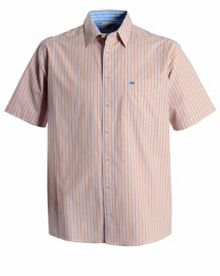 Double TWO Stripe Classic Fit Classic Collar Shirt