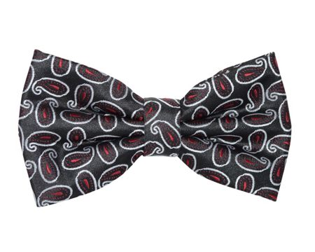 Double TWO Patterned Bow Tie