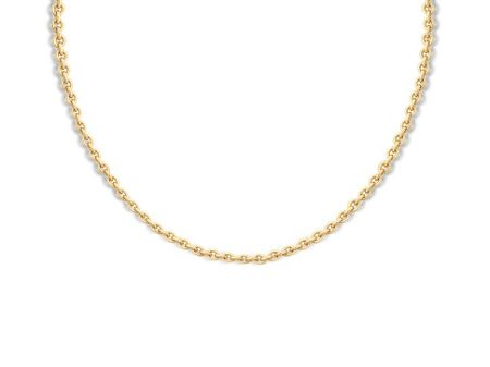 Missoma Ladies gold plain chain