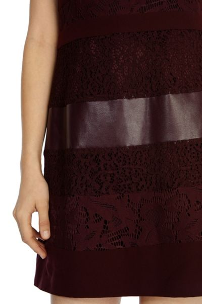 Coast Loradi lace panel dress