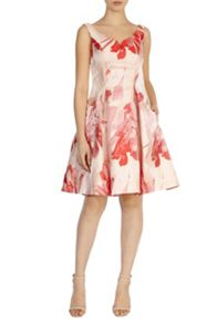 Coast Donna Crepe Dress