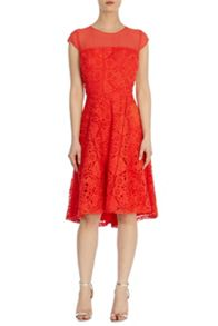 Coast Jasmin lace dress