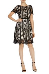 Gressia lace dress