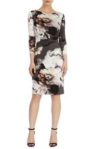 Coast Arezzo print harmony dress