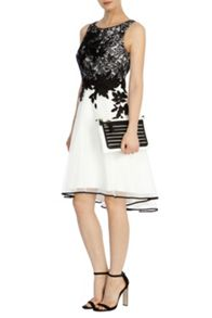 Coast Anabelle artwork dress