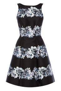 Coast Floral stripe millana dress