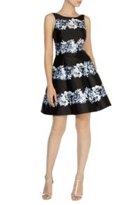 Floral stripe millana dress