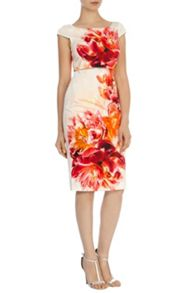 Coast Rimini print lucille dress