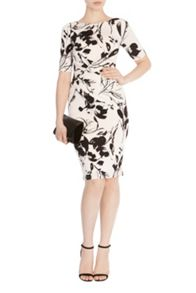 Coast Surrey Print Jamilia Dress