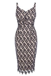 Coast Hartley Lace Shift Dress