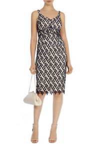 Coast Hartley Lace Dress Petite