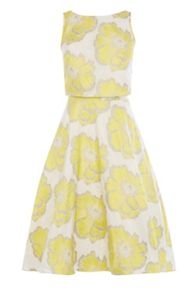 Coast Floral Jacquard Whistan Dress