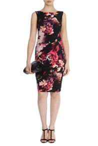 Coast Piana print carly dress petite
