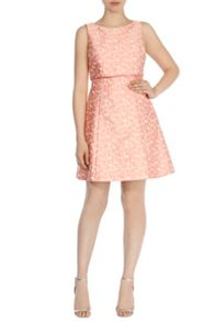 Coast Daisy-Lou Jacquard Dress