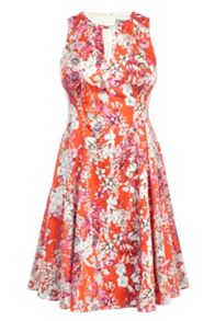 Coast Cali Print Yasmin Dress
